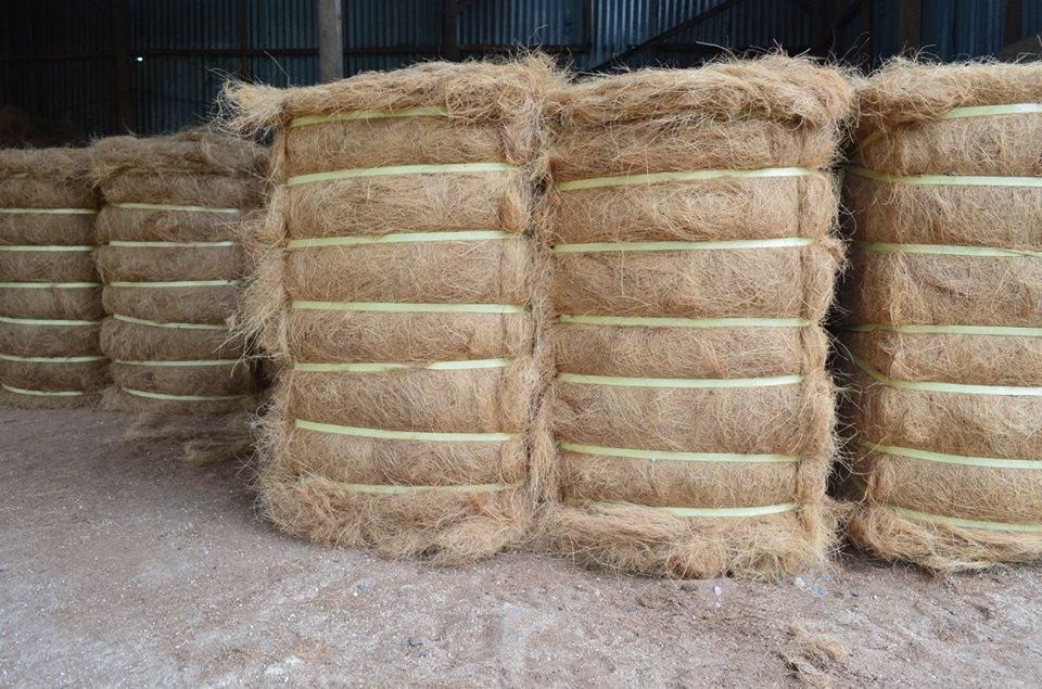 coco fibre block 100 kg